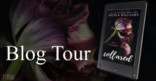 collared- blog tour